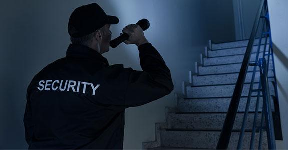 security-company-summary