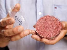 Lab Grown Meat-Weird Businesses-Disgusting Businesses