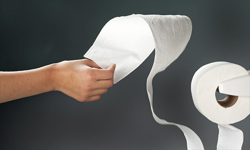 toilet-paper-support-structure